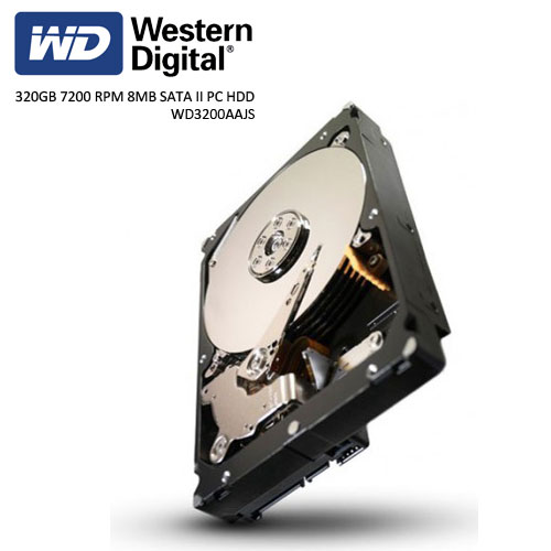 WD 3.5 Caviar Blue 320GB 7200 RPM 8MB SATA2 PC HDD WD3200AAJS