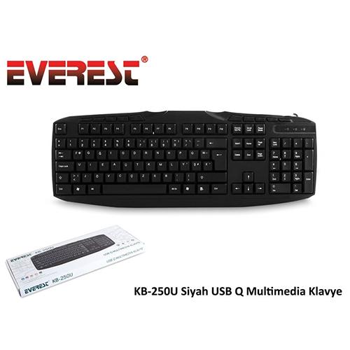 EVEREST KB-250U Q Usb Multimedya Siyah Klavye
