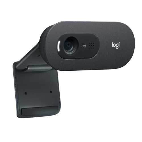 Logitech 960-001364 C505 HD Usb Mikrofonlu Webcam